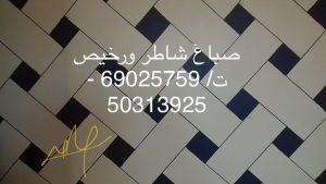 ابي رقم صباغ شاطر ورخيص في الكويت